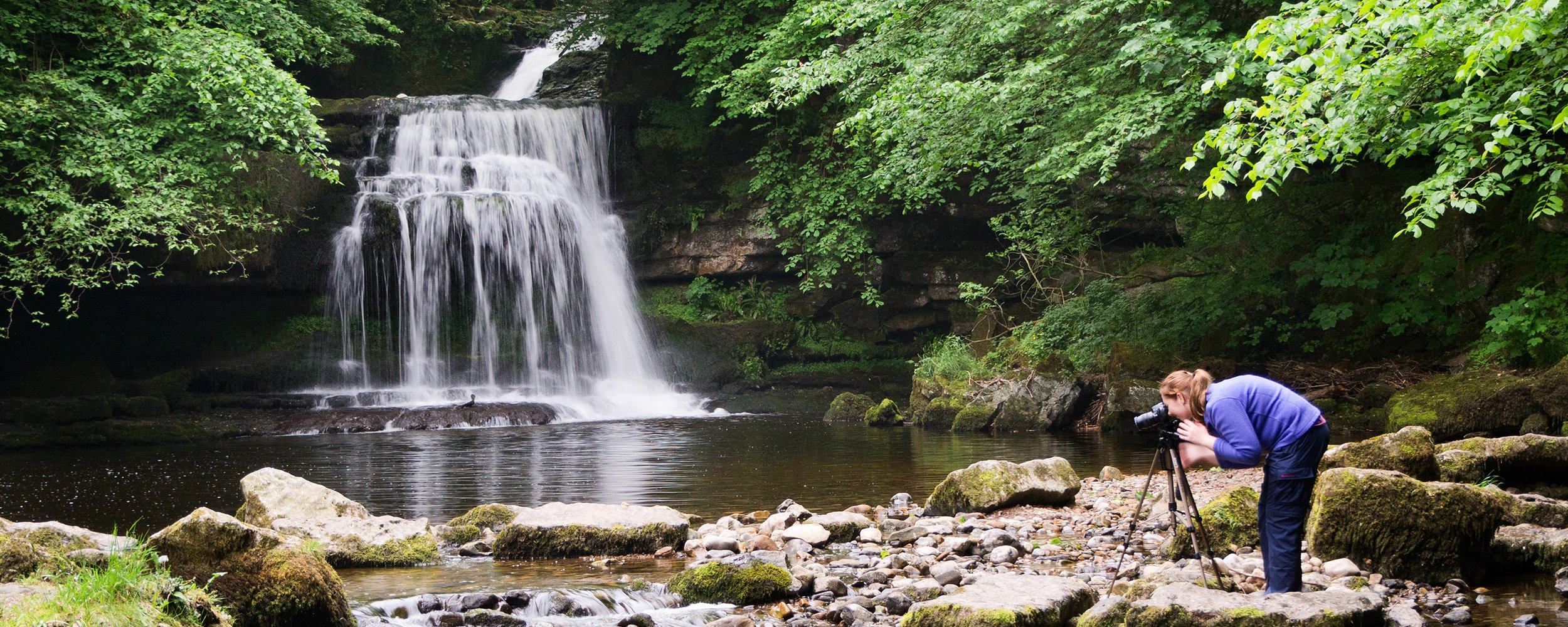Aysgarth Summer Workshop