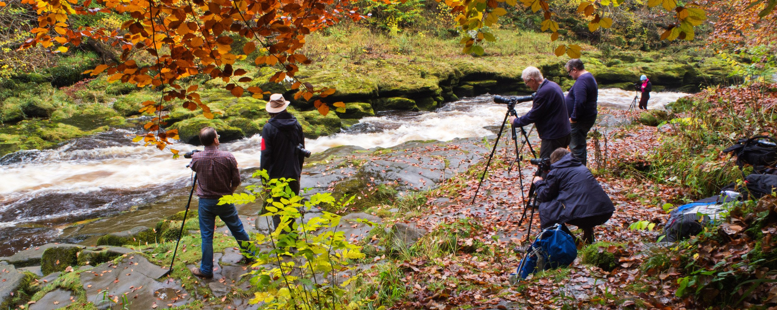 Bolton Abbey Autumn Workshop