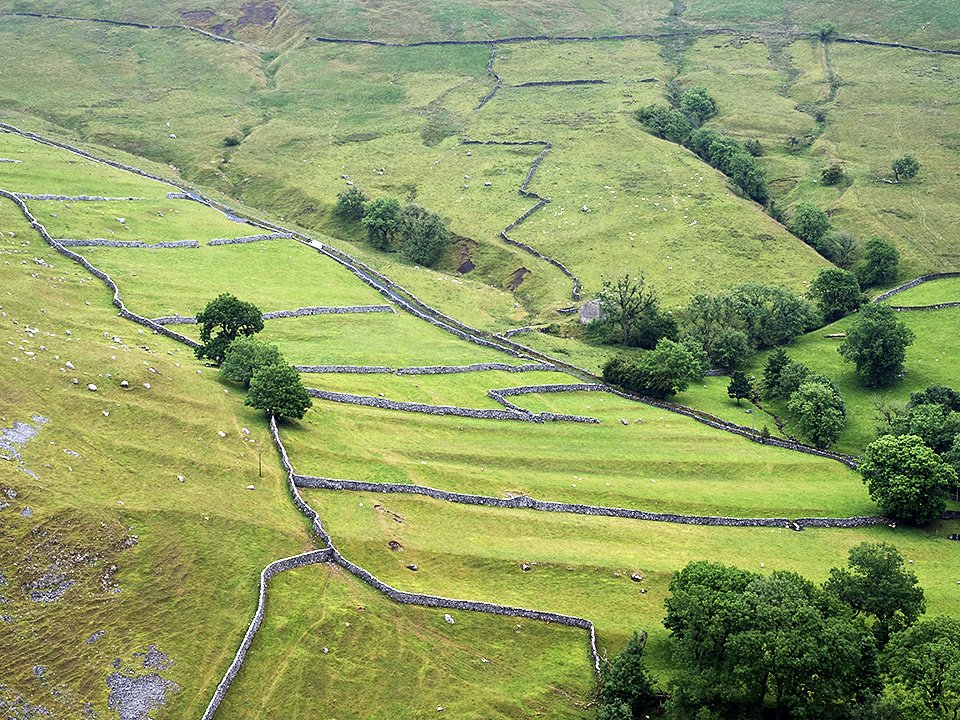 Meadows and dry stone walls from the top viewpoint above Gordale Scar - Malham WOrkshop July 2021